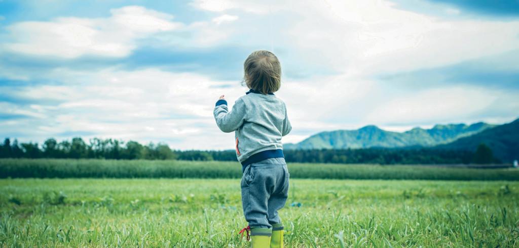 Miljö, hälsa och säkerhet (EHS)